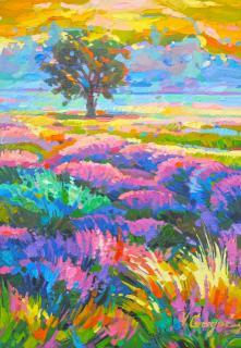 When lavender flowers