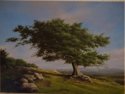 Landscape 40cm x 30cm